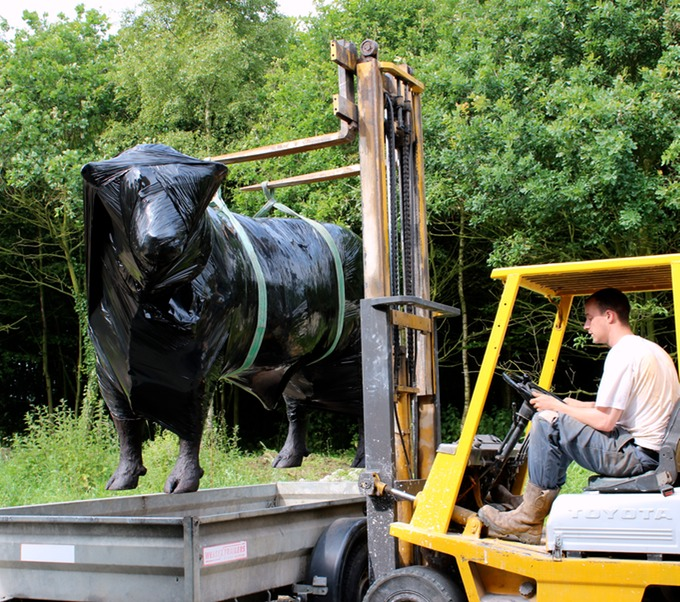 Loading Hereford bull sculpture